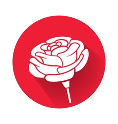 a rose flower vector image