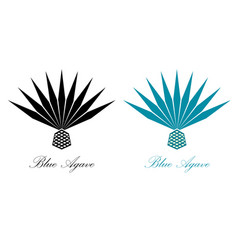 Blue agave or tequila agave plant agave logo vector
