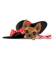 doggie in a summer hat vector image