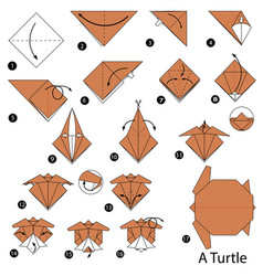 Step instructions how to make origami a turtle vector