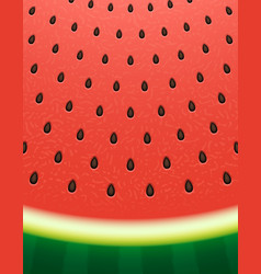 watermelon texture background with seeds vector image