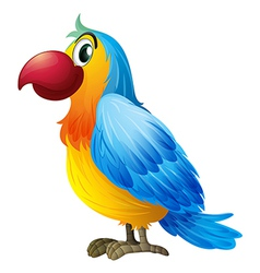 A colorful parrot vector