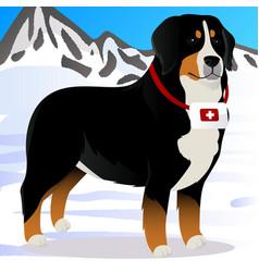 Bernes mountain dog lifesaver in mountains vector