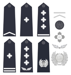 Chinese police insignia vector image