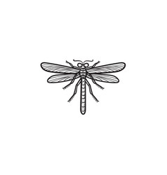 dragonfly hand drawn sketch icon vector image