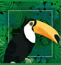 Exotic bird cartoon vector