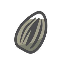 sunflower seed simple icon cartoon vector image