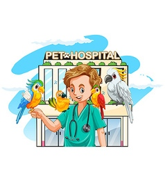 Vet and parrots at hospital vector