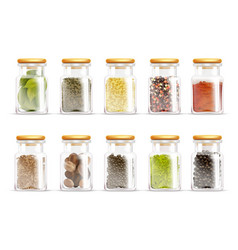 Herbs spices jars icon set vector
