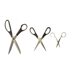 a set of scissors of different types vector image