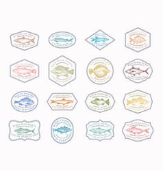 Fish vintage frame badges or logo templates vector