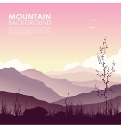 Mountain landscape with grass and huge lake vector image vector image