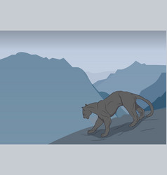 panther in the mountains vector image