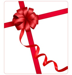 Red beauty bow with ribbon vector