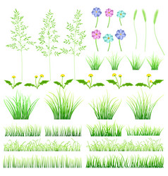 set of elements of grass vector image
