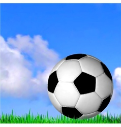 Soccer ball on the grass football vector image vector image