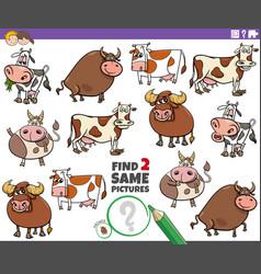 Find two same cartoon cattle farm animals vector
