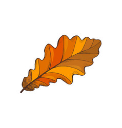 leaf autumn symbol isolated icon nature vector image