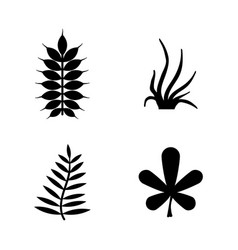 plants leafs flora simple related icons vector image