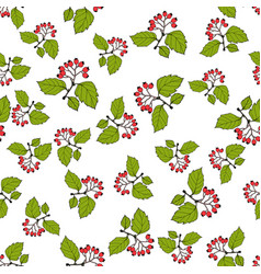 seamless pattern with english hawthorn vector image