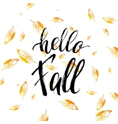 Hello fall text isolated on orange leaves vector image
