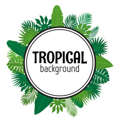 tropical leaves background summer design vector image
