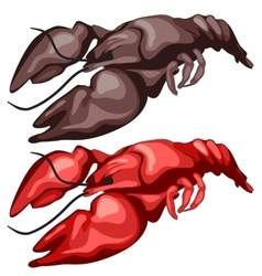 Two delicious fried crawfish isolated vector image vector image