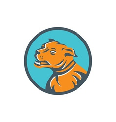 Angry Mastiff Dog Mongrel Head Circle vector