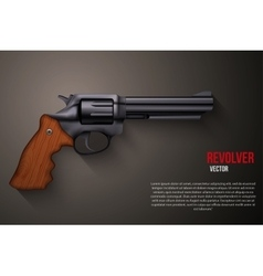 Background of Black gun metal Revolver vector image