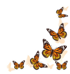 beautiful butterfly flying in a circle background vector image