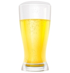 Lager light non alcoholic beer in glass vector