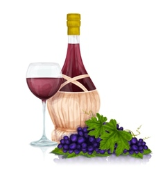 Wine jar and grape bunch print vector image