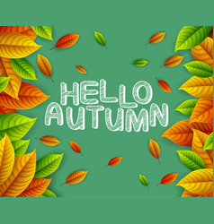 autumn leaves on green background vector image