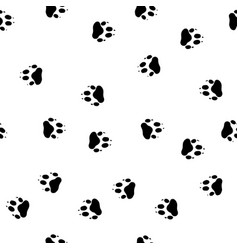 Footprint paws of a wolf vector