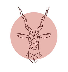 geometric head of the antelope vector image