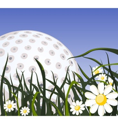 Golf ball on the grass vector image