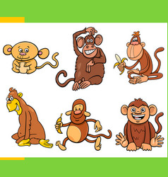 Monkeys and apes animal characters cartoon set vector
