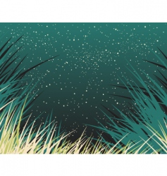 nightgrass vector image