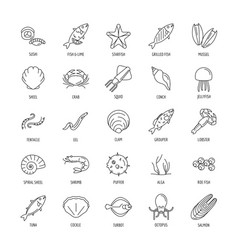 seafood set icon outline style vector image