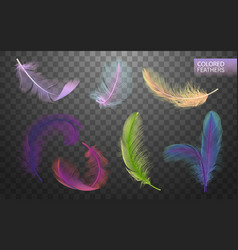 Set of isolated falling colored fluffy twirled vector