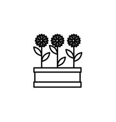 three flowers icon vector image