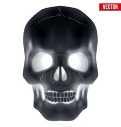 X-ray Human skull vector image
