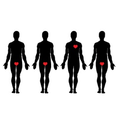 anatomy of love vector image vector image
