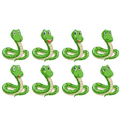 Different snake expressions vector image vector image