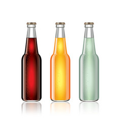 Glass soda bottles isolated on white vector image vector image