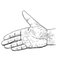 Artistic or drawing of hand open for handshake vector