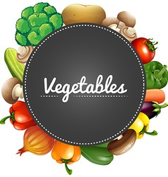 Different kind of organic vegetables vector