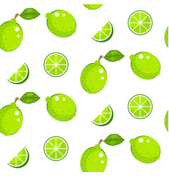 lime with green leaves on white background citrus vector image