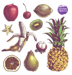 set of hand drawn juicy fruits vector image vector image