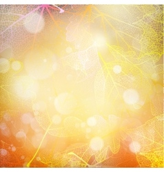 Beautiful autumn background with sun EPS 10 vector image